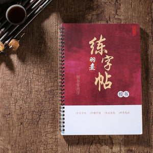 writing books 3D Chinese
