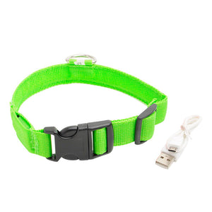 USB LED Safety Dog Collar for Small, Medium, or Large Dogs