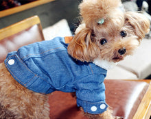 Load image into Gallery viewer, Luxury Winter Dog Jacket Puppy Dog Clothes Pet Outfits Dog Denim Coat Jeans Costume Chihuahua Poodle Bichon Pet Clothing 35S1