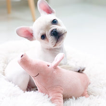 Load image into Gallery viewer, Pet Dogs Accompany Sleeping Pigs Toys Warm Soft Plush Cotton Sleeping Partner for Puppy Dog Chewing/Interactive Toy