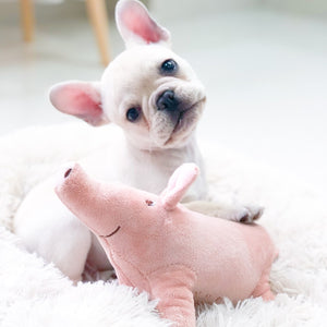 Pet Dogs Accompany Sleeping Pigs Toys Warm Soft Plush Cotton Sleeping Partner for Puppy Dog Chewing/Interactive Toy