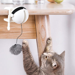 Electronic Motion Cat Toy Cat Teaser Toy Yo-Yo Lifting Ball Electric Flutter Rotating Interactive Puzzle Smart Pet Cat Ball Toy