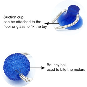 Interactive Pet Toy with Suction Cup TPR Ball Pet Tooth Cleaning Chewing Playing IQ Treat Ball For Pets