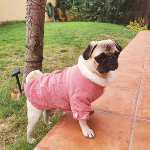 Pink Dog Clothes Winter French Bulldog Dog Clothes For Small Dogs Warm Outfit Pugs Clothing For Chihuahua Clothes Pet 38S2
