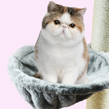 Load image into Gallery viewer, Soft Cat Hammock Install On Cat Tree Cat Hanging Thick Plush Big Capacity Cat Bed