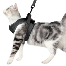 Load image into Gallery viewer, Cat Harness Escape Proof Small Cat and Dog Vest Harness with Reflective Strap Soft Mesh Adjustable Cat Walking Jacket for Kitten