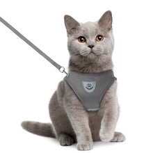 Load image into Gallery viewer, Cat Walking Harness Leash Pets Puppy Kitten Clothes Adjustable Vest Reflective Walking Lead Leash Vest for Puppy