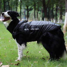 Load image into Gallery viewer, Large Dog Jacket Fur Collar Winter Dog Coat Waterproof Big Dog Coat with Removable Harness