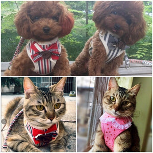 Cute Small Pet Dog Harness Leash Pet Vest Harness Leash Cat Collars Clothes For Dogs And Cats Vest S M L XL