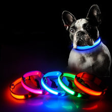 Load image into Gallery viewer, USB LED Safety Dog Collar for Small, Medium, or Large Dogs