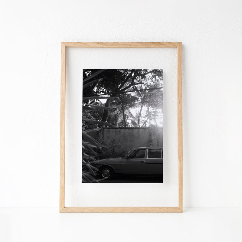Car Under The Palm Trees | Print