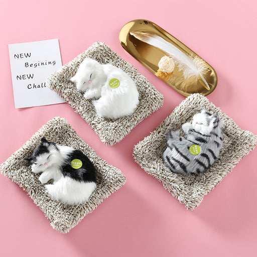 Kawaii  Japanese  Korean Simulation small bamboo charcoal cat gift box