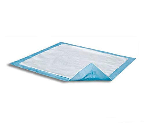Attends Care Dri-Sorb Underpad 30 X 30 Inch Disposable Cellulose/Polymer Light Absorbency, UFS-300 - Pack of 10