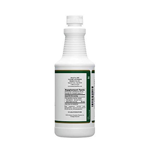 Nature's Sunshine Chlorophyll Liquid, 16 fl. oz., Kosher | Fresh Mint Chlorophyllin Assists Detoxification and Provides Intestinal, Immune, and Digestive System Support