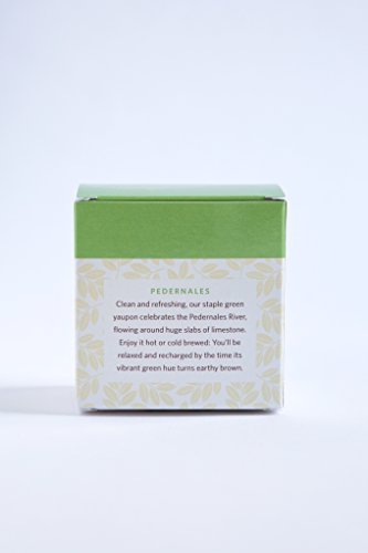 CatSpring Yaupon Box of Individual Tea Bags - Pedernales Green Yaupon - Naturally Caffeinated & Made in the USA {16 Bags}