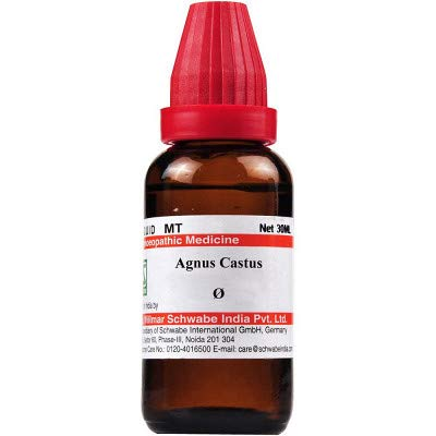 Willmar Schwabe India Homeopathic Agnus Castus Mother Tincture Q (30ml) - by Exportdeals