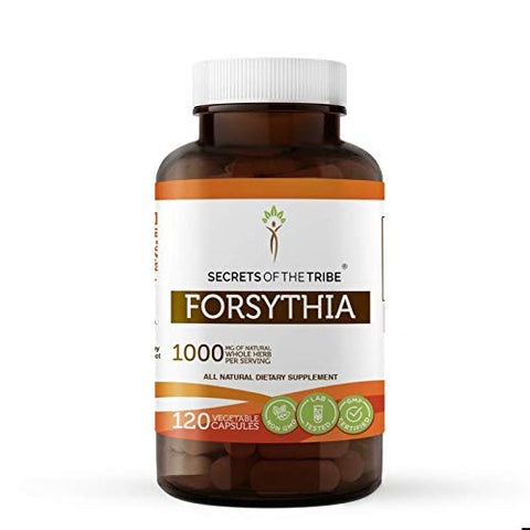 Forsythia 120 Capsules, 1000 mg, Organic Forsythia (Lian Qiao, Forsythia Suspensa) Dried Fruit (120 Capsules)