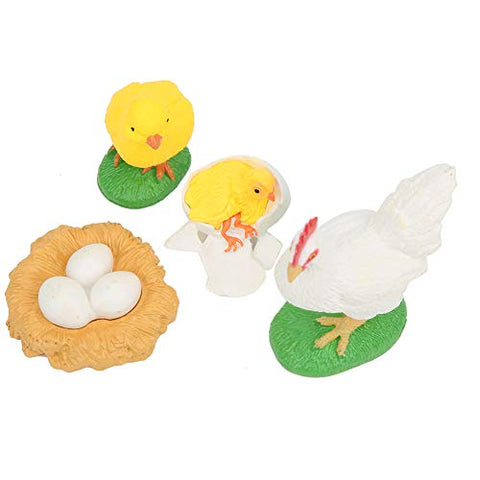 Finely Polished Vivid Highly Simulation Children Animal Model, Life Cycle Model, Safe Kids Child Infants Expand Learning Knowledge(Chicken Growth Cycle)