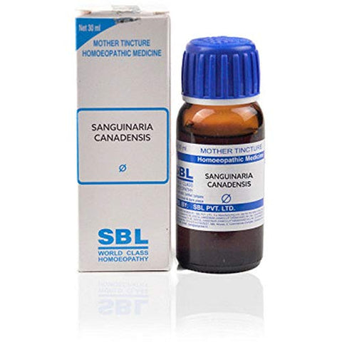 SBL Homeopathy Sanguinaria Canadensis Mother Tincture Q (30 ML) by Exportmall