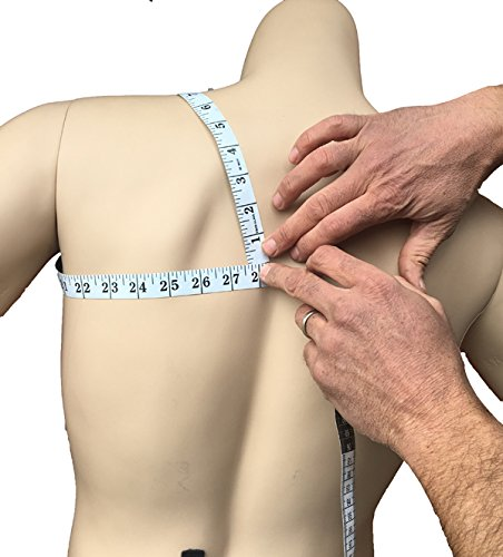 Alpha Medical Full Back Posture Aid Support. L3650 (Large)
