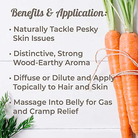 Plant Therapy Carrot Seed Essential Oil 100% Pure, Undiluted, Natural Aromatherapy, Therapeutic Grade 30 mL (1 oz)