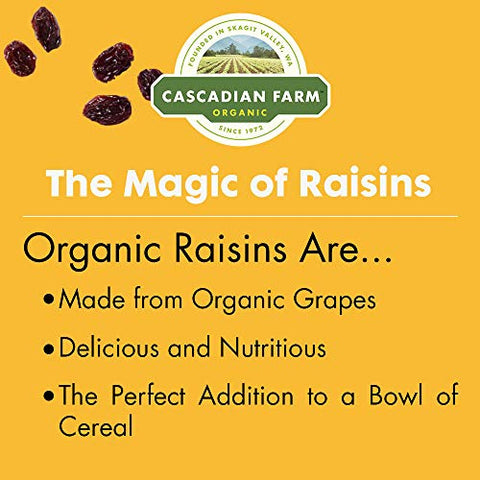 Cascadian Farm - Organic Raisin Bran Cereal, Organic, Whole Grain, 12 oz (Pack of 3) by Cascadian Farm