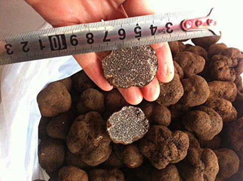 Dried Truffle Cubes Premium Grade 8 Ounce