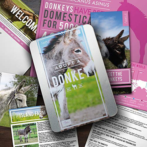 Donkey Adopt It - Charity Animal Adoption Tin