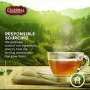 Image of Celestial Seasonings Herbal Tea, Sugar Plum Spice, 20 Count Box