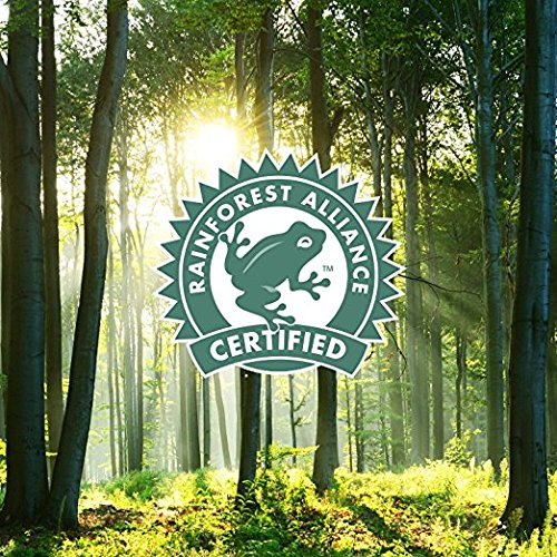 GLORYBREW - The Duke - 12 count 100% Compostable Coffee Pods for Keurig K-Cup Coffee Brewers - Rainforest Alliance certified - Medium Roast | Better than Recyclable and Biodegradable Coffee Pods