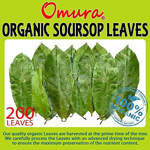 Omura ORGANIC SOURSOP Guanabana Graviola For TEA 200 LEAVES