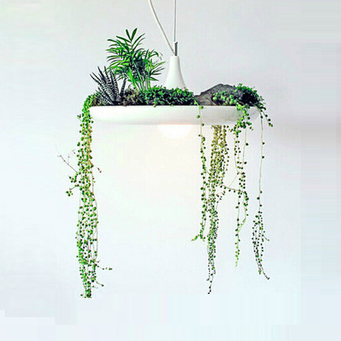 Avine Garden Pendant Light
