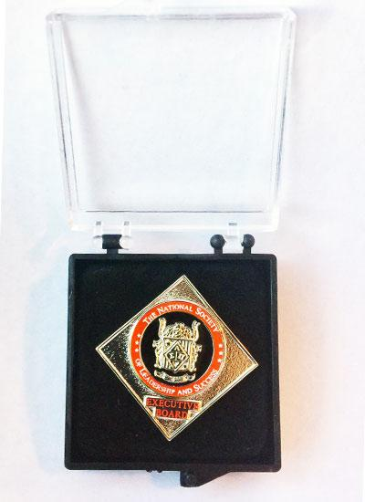 NSLS E-Board Lapel Pin