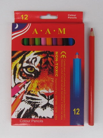 Jumbo Colouring Pencils 12pc