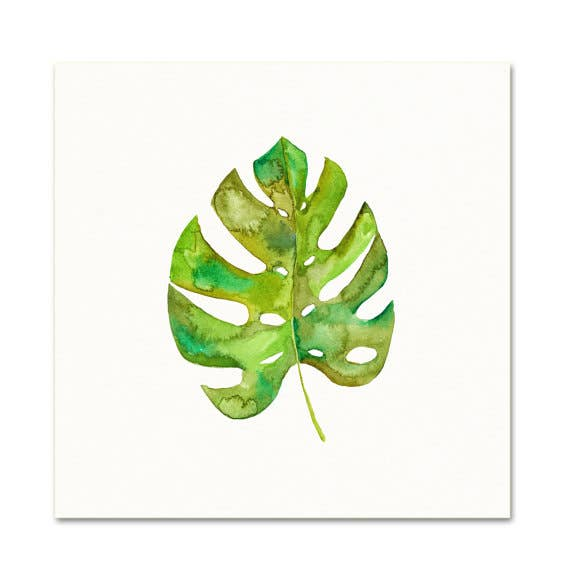 Snoogs & Wilde Art - Split Leaf Philodendron ~ Art Print