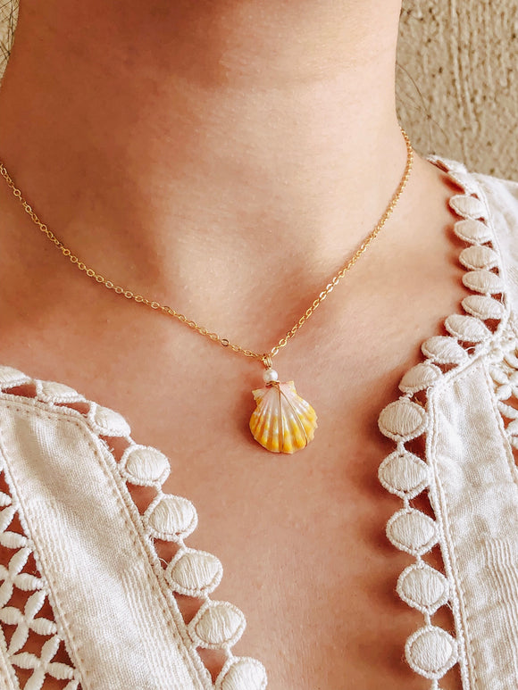 Freshwater pearl + 14k gold filled sunrise shell necklace