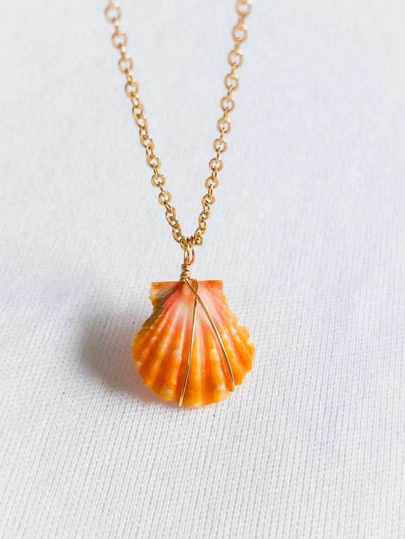 Sunrise shell necklace 14k gold filled or Sterling Silver