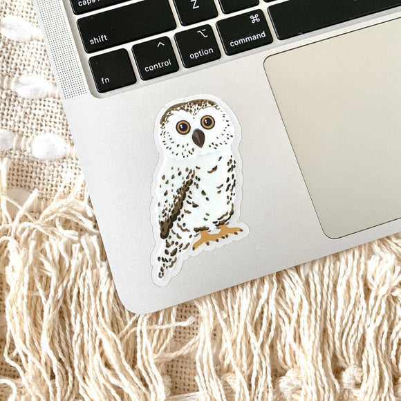Clear Owl Sticker 3x2 in.