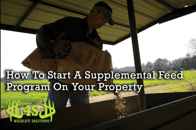 How to Start A Supplemental Feed Program