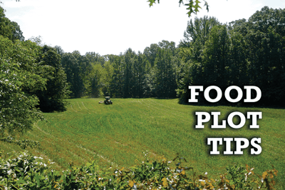Food Plot Tips