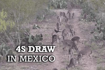 4S Draw In Mexico