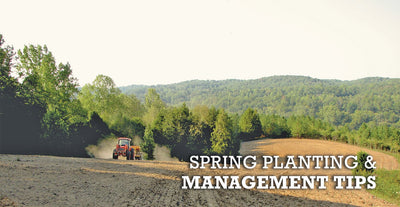 Spring Food Plot Planting and Management Information