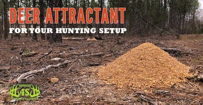Using Deer Attractant In Your Hunting Setup