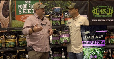 Plantler Food Plot Seed - Forage Brassica