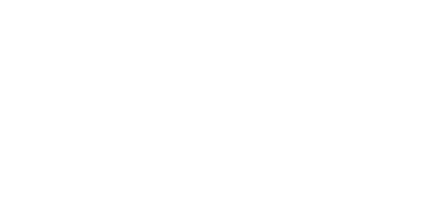 4S Decal - 4S Advanced Wildlife Solutions