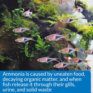 API AMMONIA 130-Test Freshwater and Saltwater Aquarium Water Test Kit