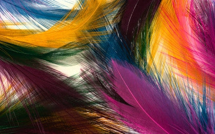 Art Feathers
