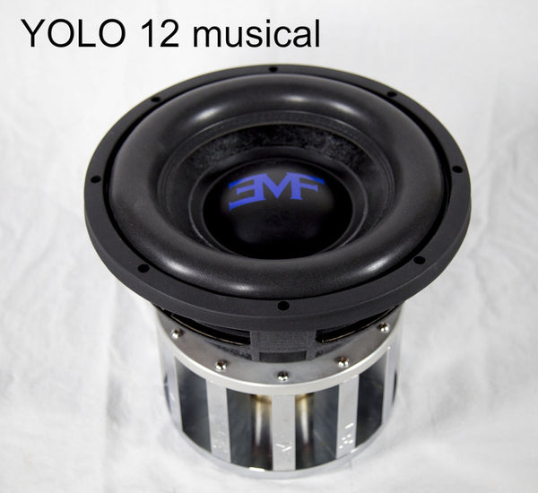 EMF Audio YOLO 12""