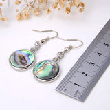 Abalone Paua Earrings With Silver Plated Copper Casings&Hooks, ERN1012AB