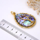 Teardrop Abalone Paua Pendant with Gold Plated Wire Tree, Medium Size, Pnd4003